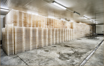 Cold Storage Facilities Design Build